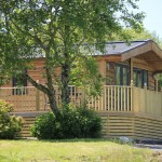 Maple tree lodge to let Cornwall