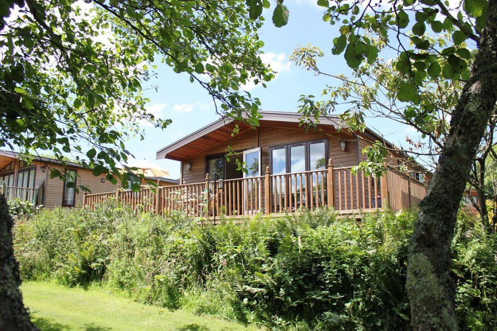 Pet friendly lodge to let